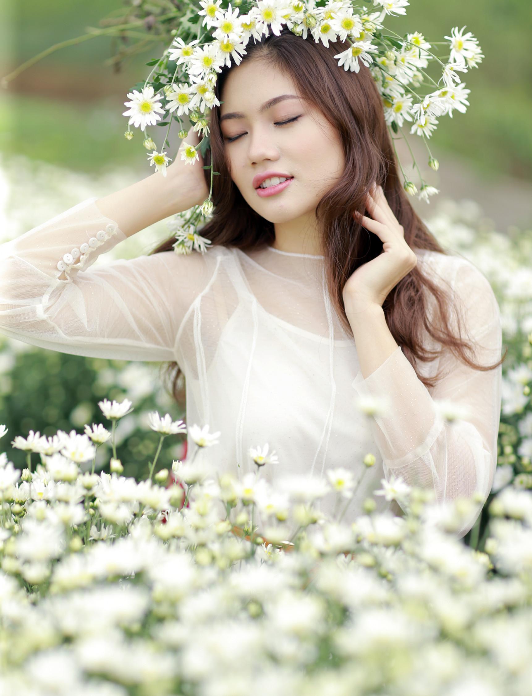 Người đẹp đất cảng Hải Phòng mơ màng giữa vườn cúc họa mi Hà Nội.