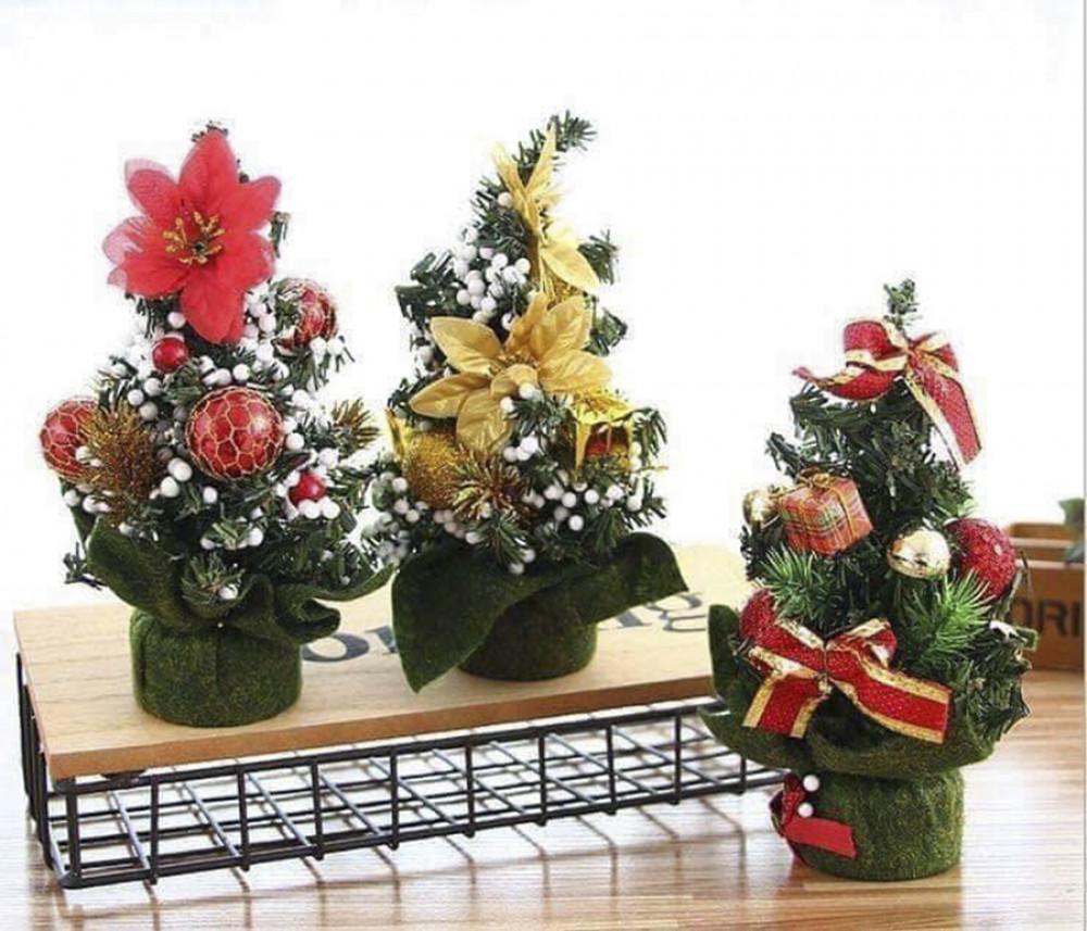 Cây thông Giáng sinh mini chỉ cao khoảng 30 - 50cm để bàn, giá từ 70.000 đồng/cây là lựa chọn của những gia đình có không gian hạn chế.