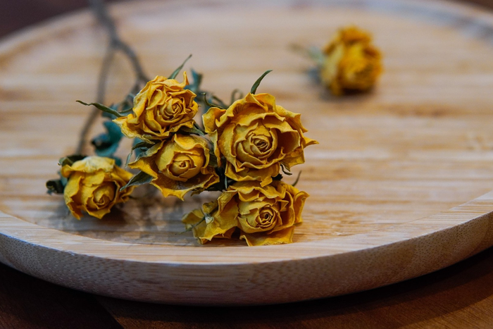 """Quà tặng từ hoa """"xanh"""" được ưa chuộng trong ngày Phụ nữ Việt Nam  - Ảnh 1."""