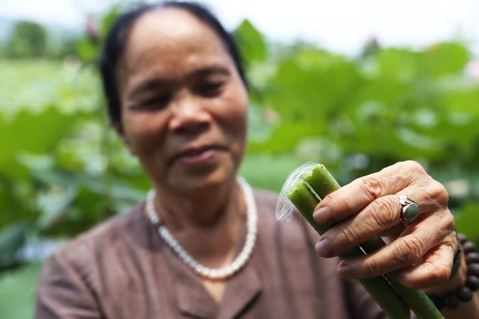 Người Việt Nam đầu tiên bắt sen nhả tơ để dệt thành khăn bán 10 triệu đồng/chiếc - Ảnh 4.
