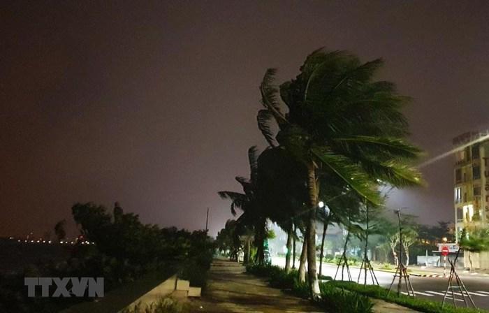Bão số 9 giật cấp 16 trên vùng biển ngoài khơi từ Đà Nẵng đến Phú Yên - Ảnh 1.