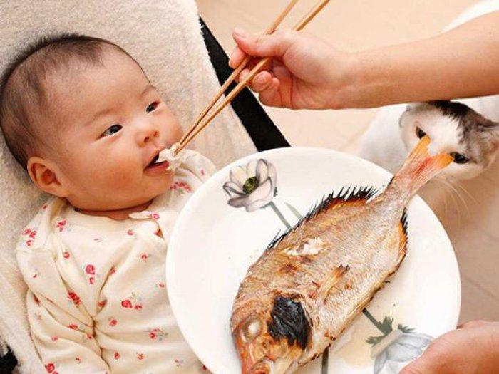 4 loại cá trẻ càng ăn càng tăng IQ, 5 loại ăn vào dễ hỏng não lại độc chết  người » Báo Phụ Nữ Việt Nam
