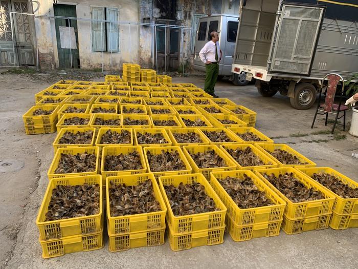 40.000 con gia cầm nhập lậu từ Trung Quốc vào Việt Nam đang trên đường tiêu thụ - Ảnh 2.