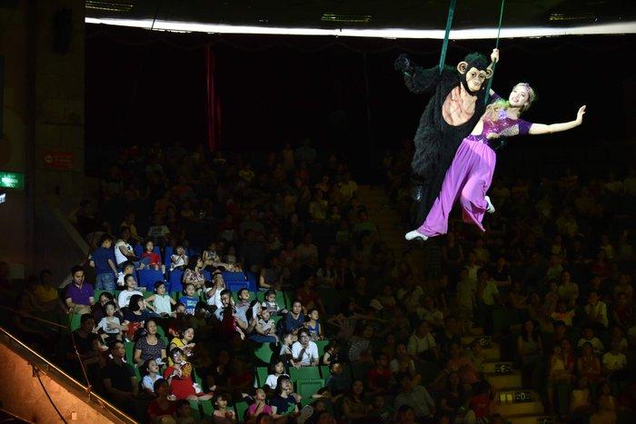 Tái hiện câu chuyện bảo vệ rừng xanh trên sân khấu xiếc - Ảnh 2.