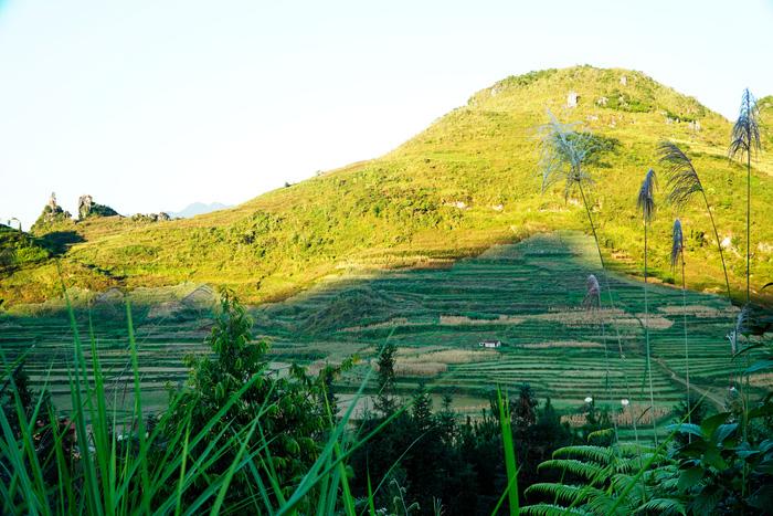 Làng Homestay của người Dao trên Cao nguyên đá Đồng Văn - Ảnh 1.