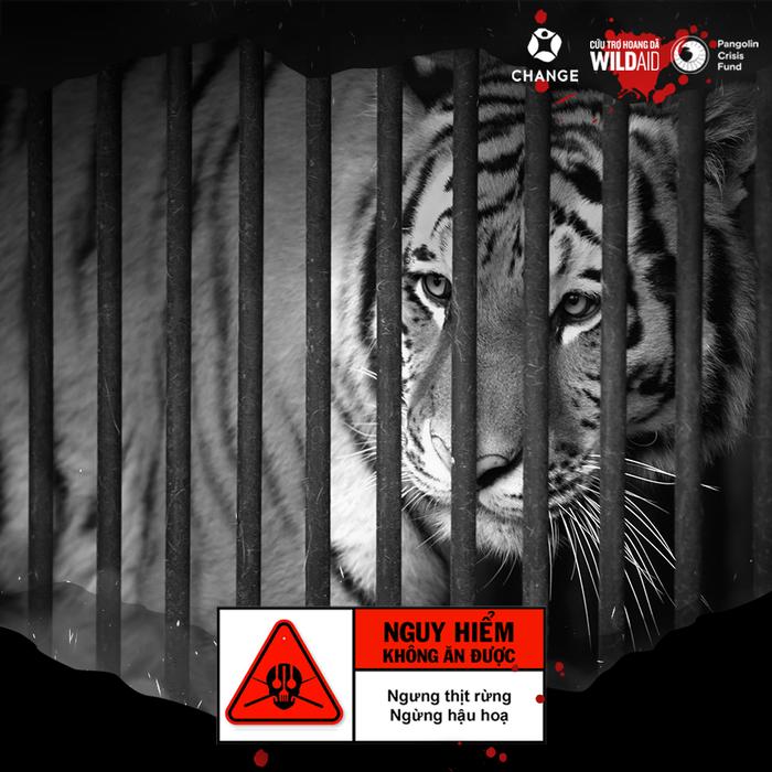 Khánh Vân, Trọng Hiếu cùng nhiều nghệ sĩ lên tiếng bảo vệ động vật hoang dã - Ảnh 1.