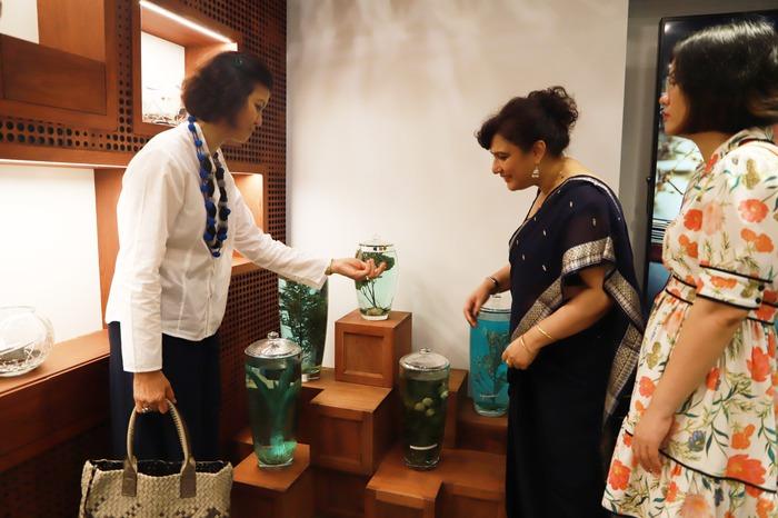 Phụ nữ ASEAN tìm hiểu về các sản phẩm chăm sóc sức khỏe từ thảo dược của Việt Nam - Ảnh 5.