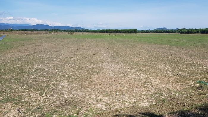 Chỉ vài tháng nữa thôi, cánh đồng này sẽ mênh mông biển nước bởi lũ lụt, nhưng hiện tại thì không thể canh tác được bất kỳ loài cây nào vì nắng hạn.