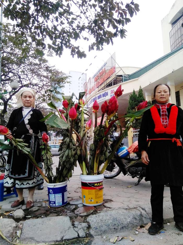 Hoa chuối rừng xuống phố, giúp các sinh viên Dao mang Tết ấm về bản - Ảnh 2.