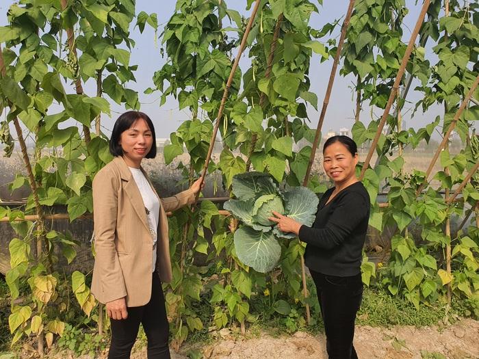 Người phụ nữ làm giàu từ nông nghiệp công nghệ cao - Ảnh 3.