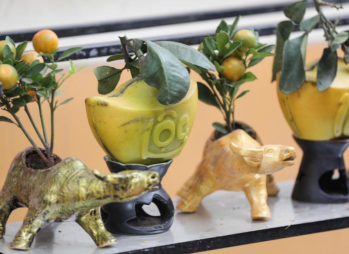 """""""Trâu cõng quất bonsai"""" giá tiền triệu vẫn hút khách - Ảnh 5."""