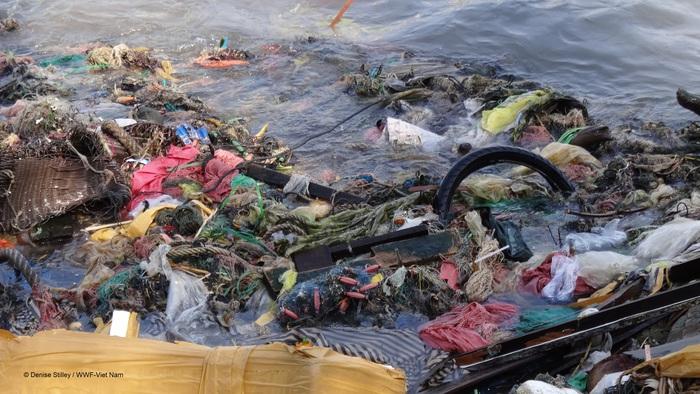 Nâng cao trách nhiệm và sức mạnh của người tiêu dùng đối với việc giảm thiểu rác thải nhựa - Ảnh 1.