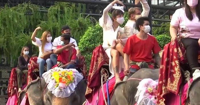 Đám cưới tập thể trên lưng voi ở Thái Lan nhân lễ Tình nhân - Ảnh 5.