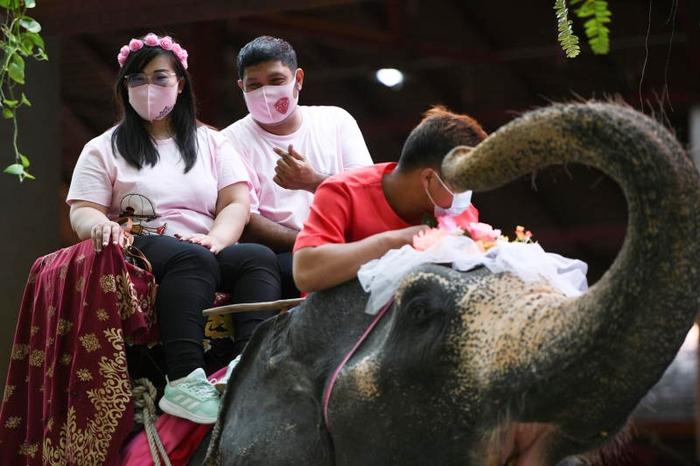 Đám cưới tập thể - cưỡi voi