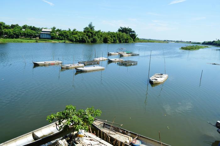"""Hiệu quả nuôi cá bằng """"lồng thuyền"""" ở Quảng Trị - Ảnh 1."""