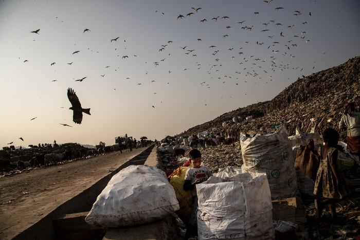 Cuộc sống thường ngày của một cậu bé nhặt rác ở Ấn Độ - Ảnh 16.