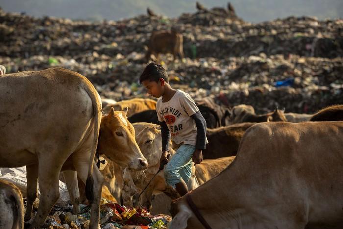 Cuộc sống thường ngày của một cậu bé nhặt rác ở Ấn Độ - Ảnh 9.