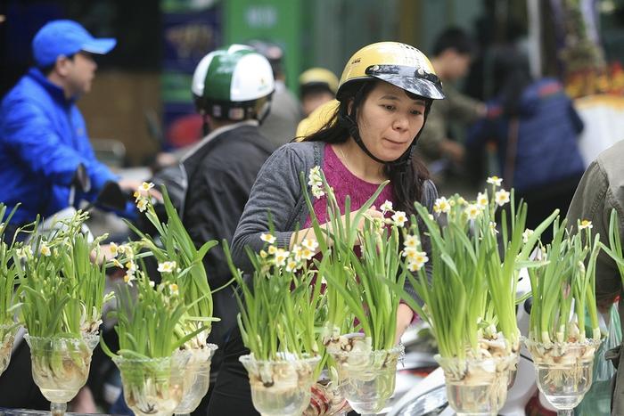 Sắm Tết 2021: Cách chọn và chăm sóc hoa thủy tiên bừng nở ngày đầu năm  - Ảnh 3.