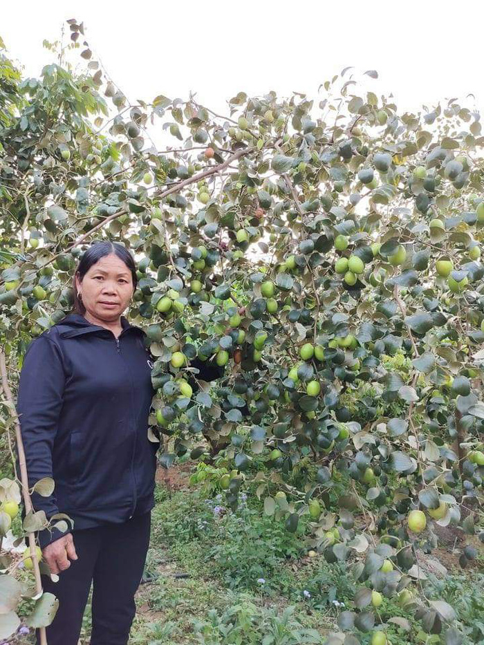 Từ giấc mơ đủ ăn đủ mặc trở thành bà chủ vườn cây ăn quả với thu nhập cao - Ảnh 2.