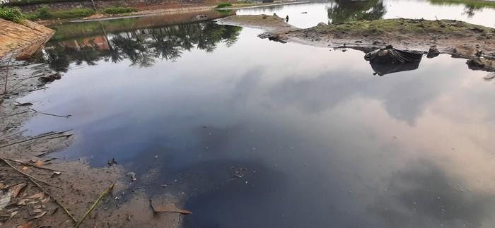 Nghệ An: Ô nhiễm nghiêm trọng tại hồ điều hòa Vinh Tân - Ảnh 1.