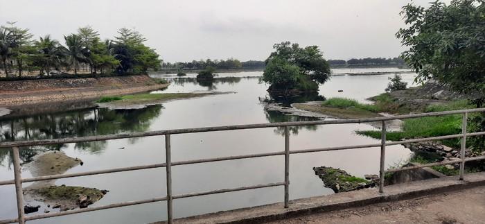 Nghệ An: Ô nhiễm nghiêm trọng tại hồ điều hòa Vinh Tân - Ảnh 7.