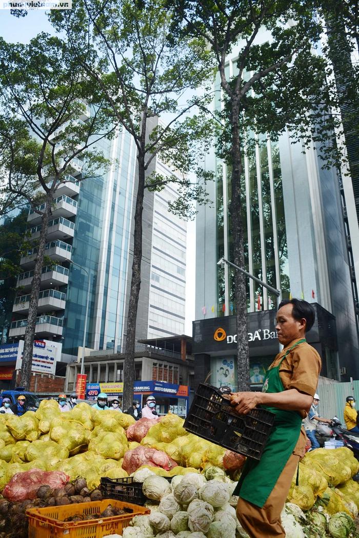 """Bắp cải, cà rốt Đà Lạt chờ người Sài Gòn """"ủng hộ dùm"""" - Ảnh 2."""