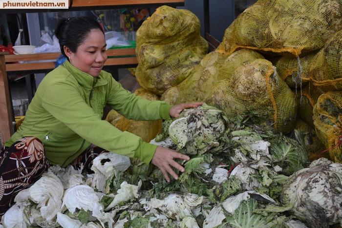 """Bắp cải, cà rốt Đà Lạt chờ người Sài Gòn """"ủng hộ dùm"""" - Ảnh 3."""