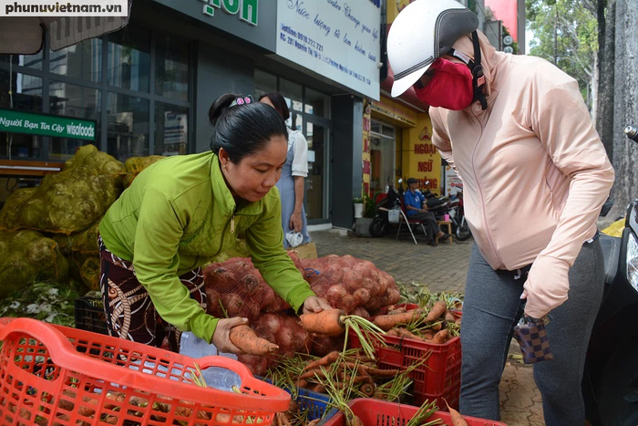 """Bắp cải, cà rốt Đà Lạt chờ người Sài Gòn """"ủng hộ dùm"""" - Ảnh 4."""