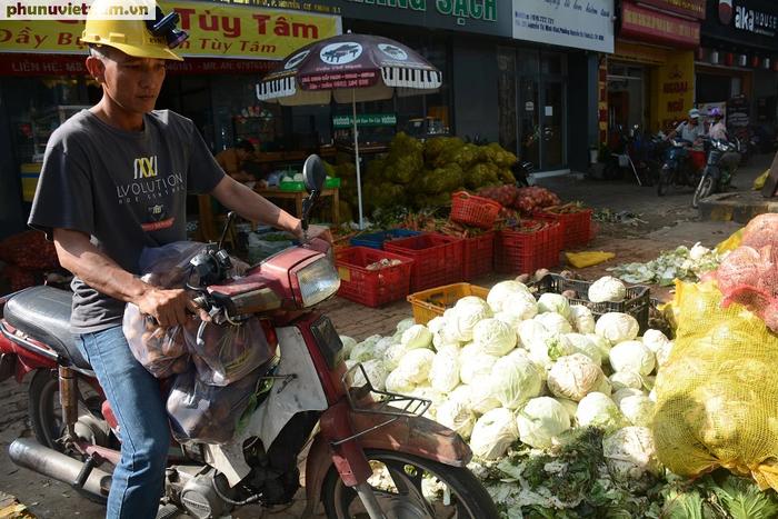 """Bắp cải, cà rốt Đà Lạt chờ người Sài Gòn """"ủng hộ dùm"""" - Ảnh 9."""