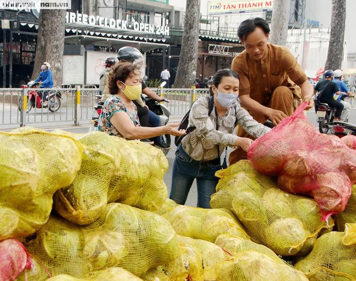 Bỏ công cắt gọt, rao bán 8 tấn bắp cải ở trung tâm Sài Gòn - Ảnh 1.