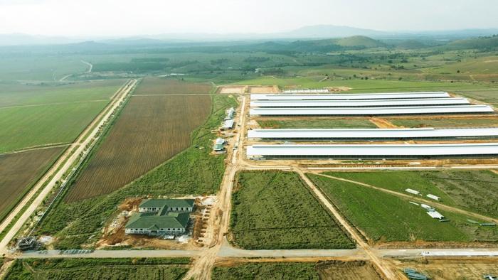 """Siêu dự án trang trại của Vinamilk tại Lào sẽ """"cho sữa"""" vào đầu năm 2022 - Ảnh 1."""