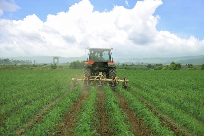 """Siêu dự án trang trại của Vinamilk tại Lào sẽ """"cho sữa"""" vào đầu năm 2022 - Ảnh 2."""