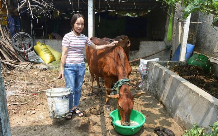 """Mô hình """"Ngân hàng con giống"""", điểm tựa giúp phụ nữ Quảng Trị vươn lên thoát nghèo"""