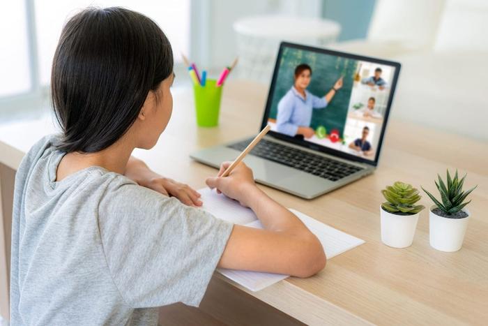 Chuyển đổi hình thức học online: Trung tâm giáo dục phải thoả thuận với phụ huynh - Ảnh 1.