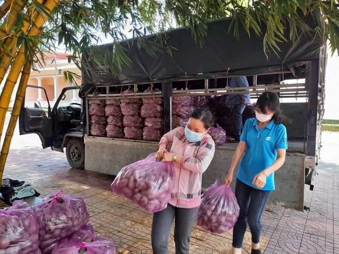 Hội LHPN tỉnh Hậu Giang hỗ trợ tiêu thụ 11 tấn khoai lang cho nông dân Vĩnh Long - Ảnh 1.