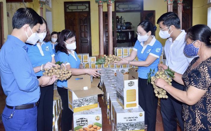 Hội LHPN tỉnh Hưng Yên hỗ trợ người dân tiêu thụ hàng trăm tấn nhãn lồng