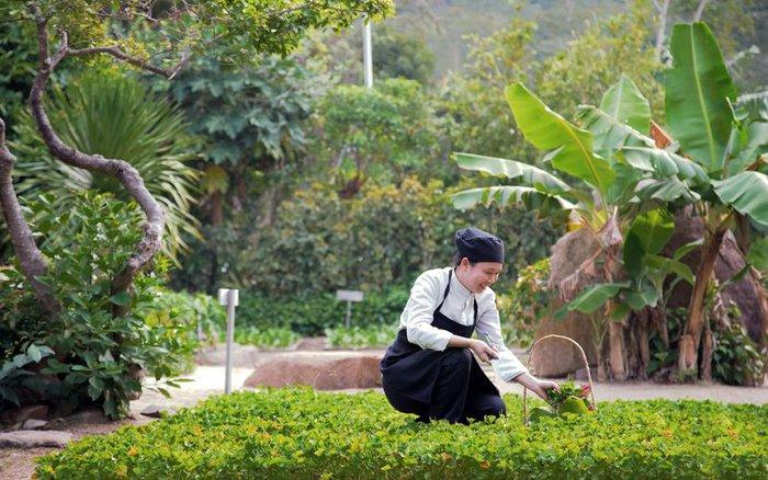 Việt Nam có đại diện duy nhất lọt top 11 khu nghỉ sinh thái hàng đầu thế giới - Ảnh 2.