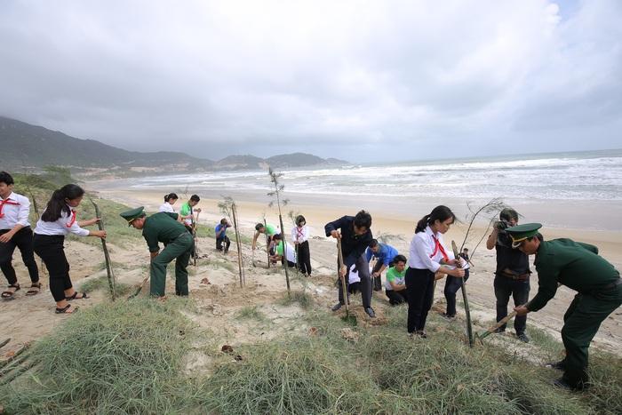 Các em học sinh, các bạn đoàn viên thanh niên tỉnh Bình Định cùng trồng cây phi lao dọc bờ biển trong chương trình Quỹ 1 triệu cây xanh cho Việt Nam