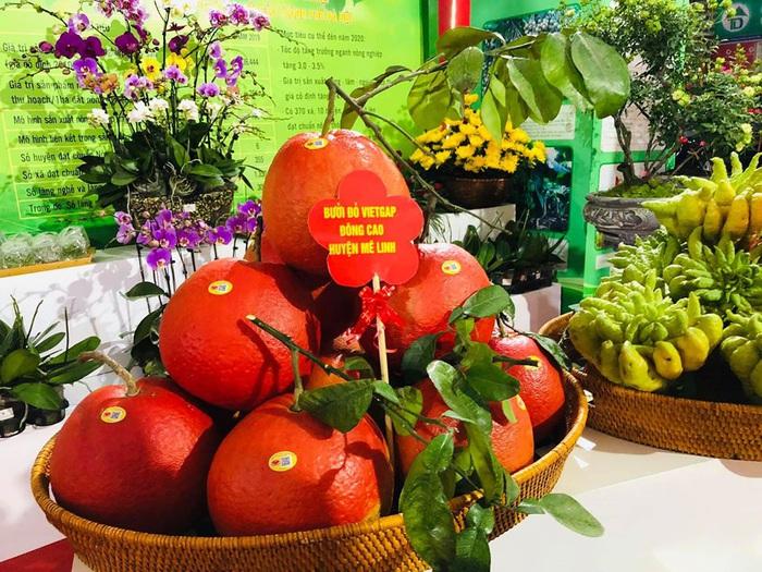 Nhiều loại nông sản qusy góp mặt tại ngày hội
