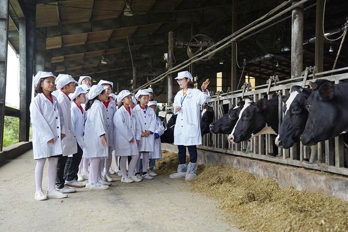 1 ngày trải nghiệm vui vẻ của các em nhỏ tại Trang trại bò sữa Organic TH  - Ảnh 1.