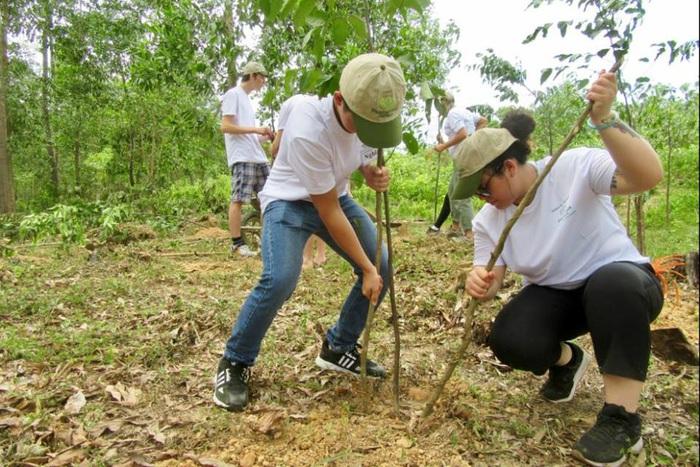 Tổ chức Peace Trees trồng cây phủ xanh đồi núi