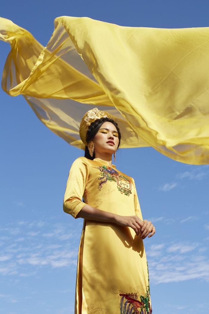 Ngắm họa tiết văn hóa cổ thời nhà Đinh, nhà Lê trên tà áo dài Tết  - Ảnh 5.