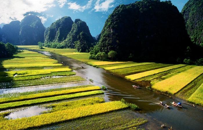 Du lịch Tam Cốc - Bích Động (Ninh Bình) mùa lúa chín