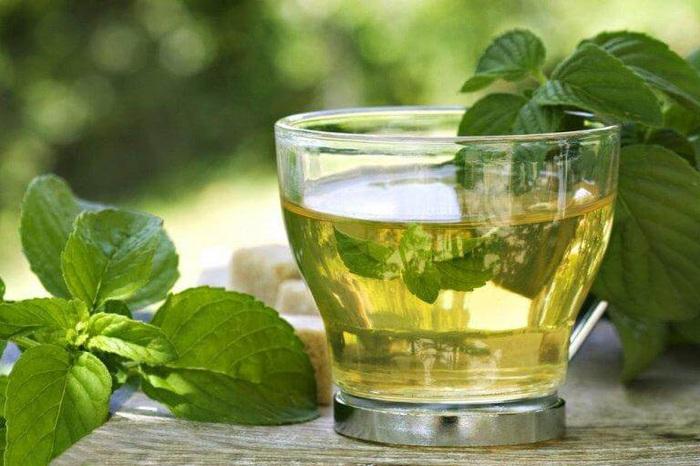 4 cách pha trà xanh có tác dụng giảm cân giúp vóc dáng đẹp - Ảnh 1.