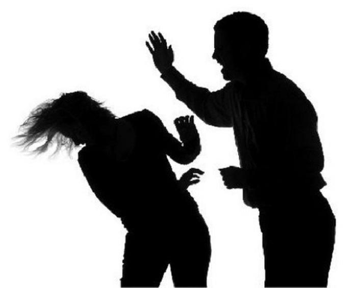 Bạo lực giới - Ảnh 2.