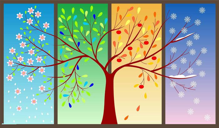 Chuyện cây lê 4 mùa và bài học thấm thía người cha gửi đến các con - Ảnh 1.