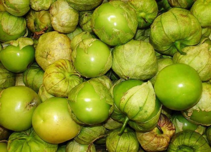 Loại quả dại mọc đầy ở Việt Nam, ở Nhật bán 700.000 đồng/kg - Ảnh 2.