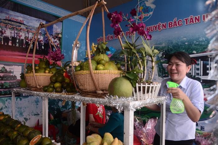 Hội LHPN Bình Dương: Lan tỏa tinh thần xây dựng nông thôn mới gắn với '5 không 3 sạch' - Ảnh 2.