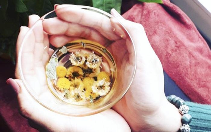 Các loại trà thảo mộc tăng sức đề kháng, giúp phòng dịch bệnh