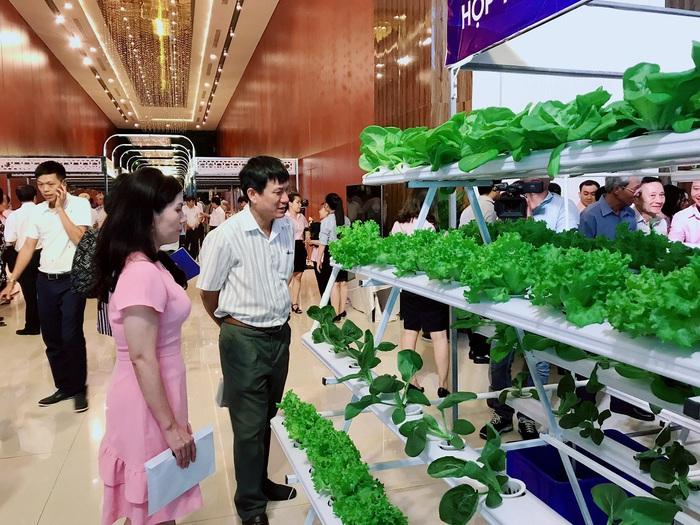 (anh Đăng) Phú Yên: Khơi nguồn cho phụ nữ khởi nghiệp - Hỗ trợ bằng nhiều phương thức   - Ảnh 1.